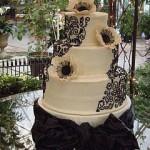 tracy's cake