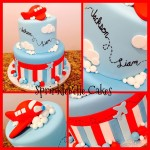 Little Airplane Cake